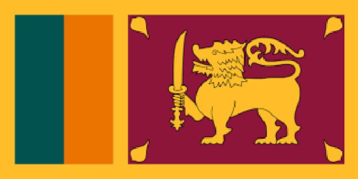 विदेशी मुद्रा विनिमयमा समस्यापछि कार आयातमा कडाई :श्रीलङ्का